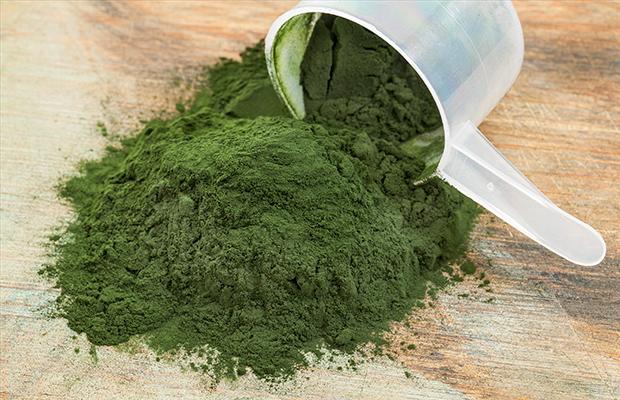 Algen für schöne Haut – wie wirken Algen?